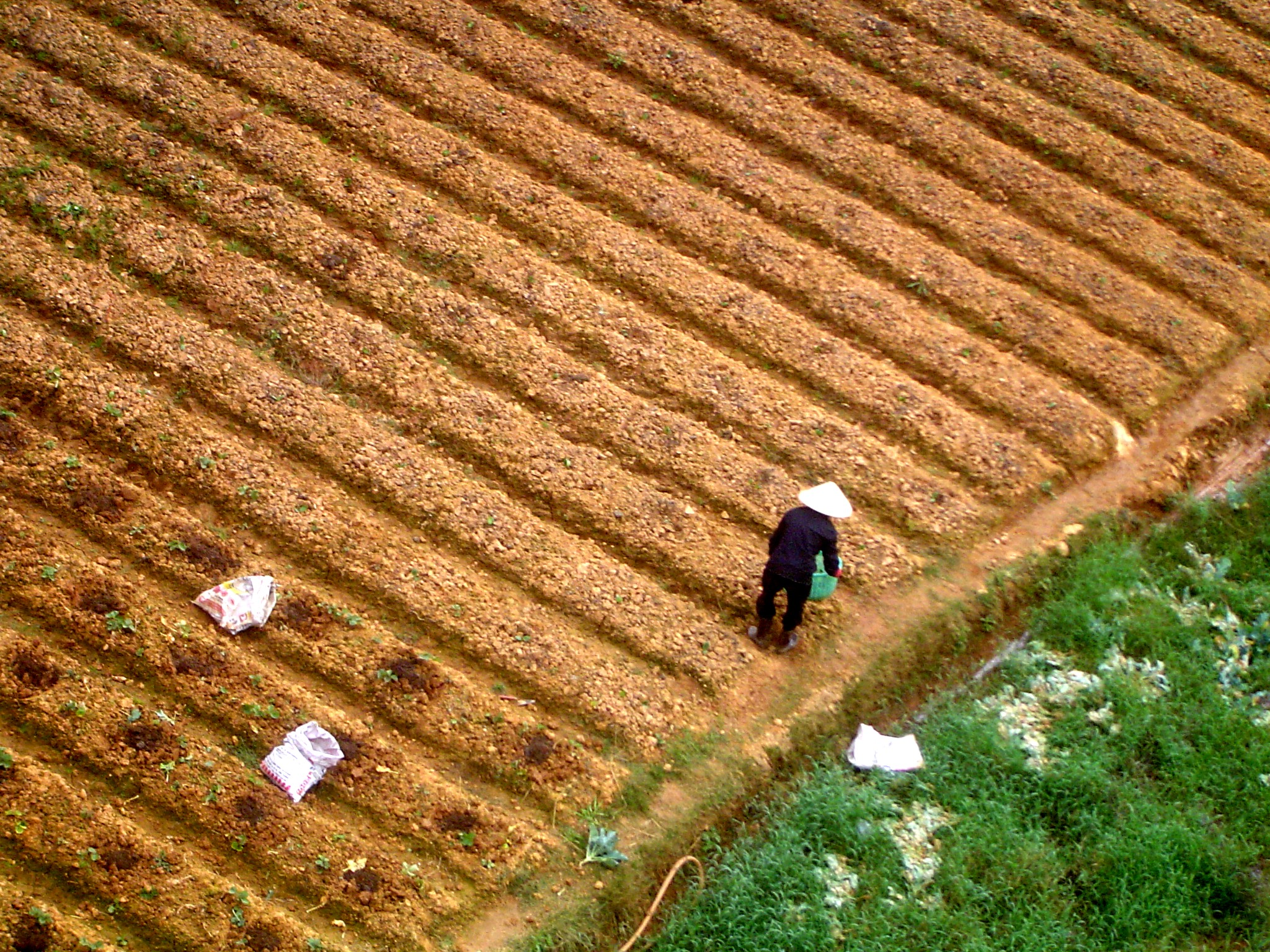 parable of the sower and stewardship considering stewardship
